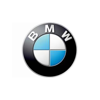 Диски на БМВ Х6: кованные и литые, оригинальные разноширокие диски на bmw x6